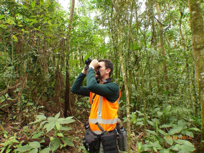 Concessionária realiza monitoramento de fauna